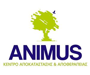 animus300X250