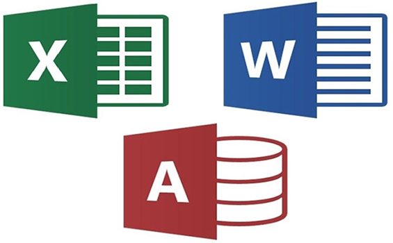 word-excel-access